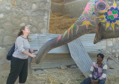 At the Elephant Village
