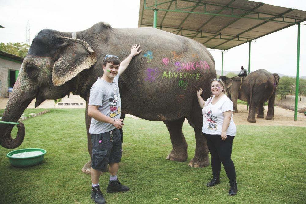 Close encounters of the elephant kind